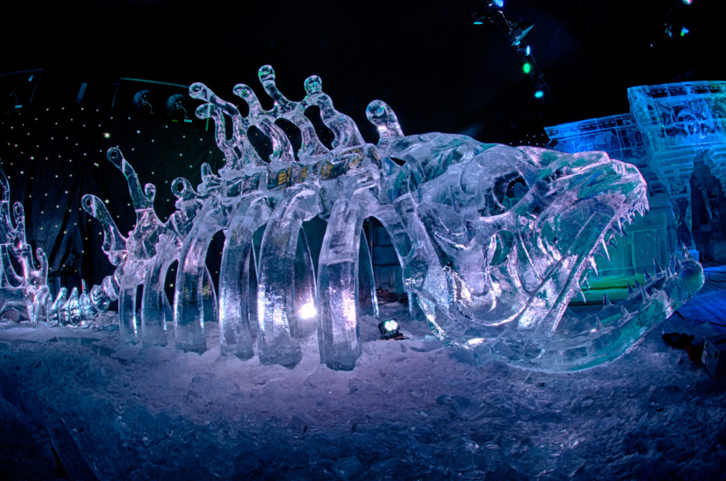 Icy Fish bei ICE Magic 2018 in Linz